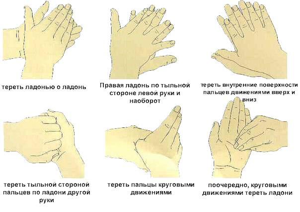 Как правильно мыть руки перед кормлением