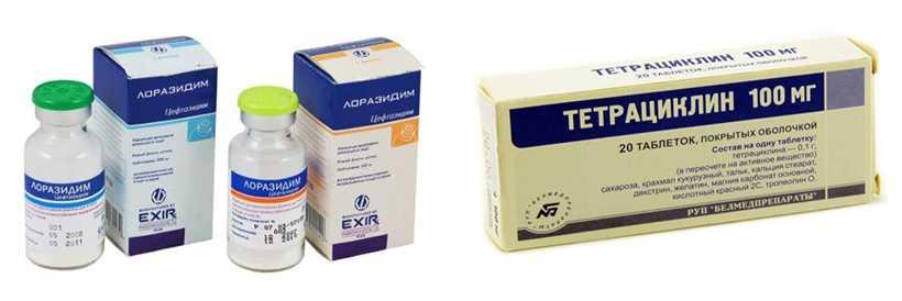 Антибиотики группы тетрациклинов и бета-лактамов
